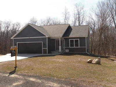 Allegan Single Family Home For Sale: 173 Summit Drive