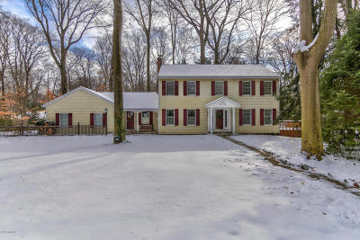 Holland, West Olive Single Family Home For Sale: 283 Portchester Road
