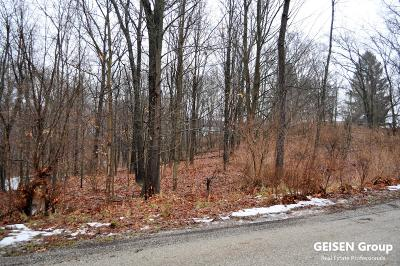 Belding Residential Lots & Land For Sale: 230 Thurman Street