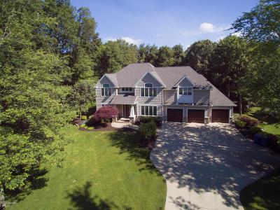 Kalamazoo County Single Family Home For Sale: 6914 Northstar