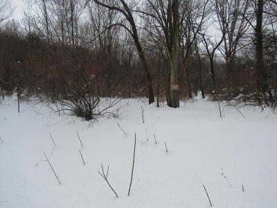 Berrien Springs Residential Lots & Land For Sale: Lake Chapin Road
