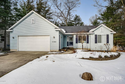 Pentwater Single Family Home Active Contingent: 5582 Blackfoot Road