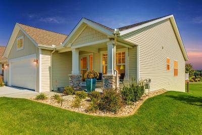 Hamilton Condo/Townhouse For Sale: 3481 S Riverwalk Drive #16