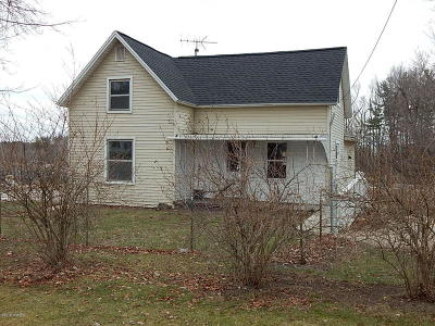 Lake Odessa MI Single Family Home For Sale: $82,000