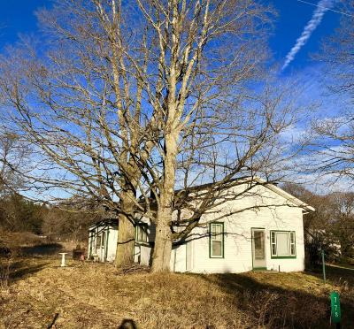 Mecosta Single Family Home For Sale: 778 W Maple Street
