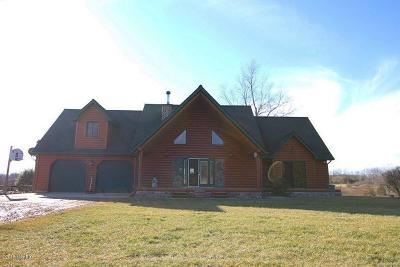 Hanover MI Single Family Home For Sale: $334,900