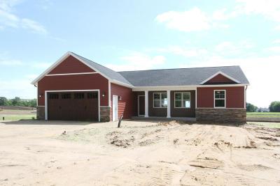 Van Buren County Single Family Home For Sale: 48279 Cr 652
