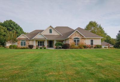 Kalamazoo County Single Family Home For Sale: 10340 W Rs Street
