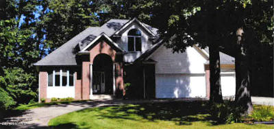 Kalamazoo Single Family Home For Sale: 6410 Trundel Lane