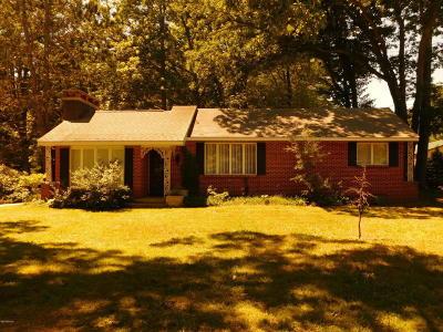 Ludington Single Family Home For Sale: 3691 N Jebavy Drive