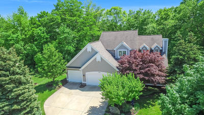 Single Family Home For Sale: 3096 Park West Court