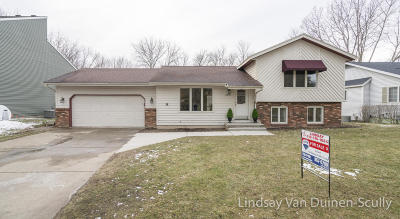 Grand Rapids Single Family Home For Sale: 2555 Birchcrest Drive SE