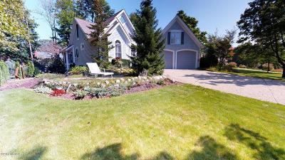 Saugatuck, Douglas Single Family Home For Sale: 550 Francis Street