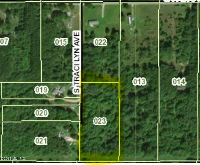 Newaygo County Residential Lots & Land For Sale: 98th