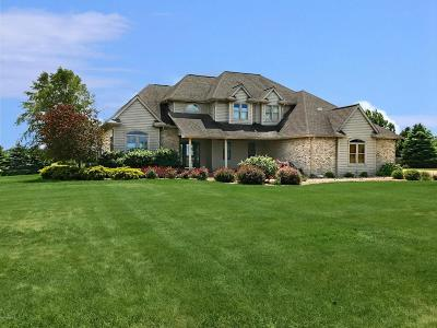 Benton Harbor Single Family Home For Sale: 7996 E Empire Avenue