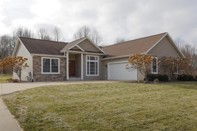 Otsego Single Family Home For Sale: 7525 Stoney Woods Drive