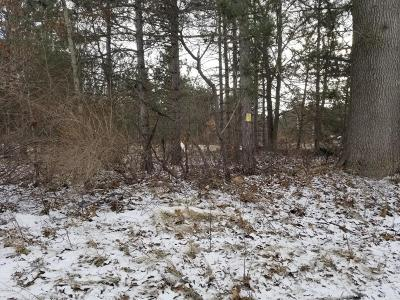 Newaygo County Residential Lots & Land For Sale: 3138 E 96th Street