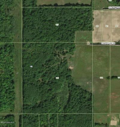 Newaygo County Residential Lots & Land For Sale: E Kathy Lee Lane