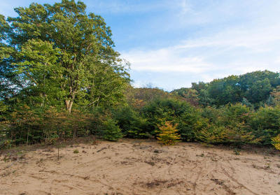 Grand Haven, Spring Lake, Ferrysburg Residential Lots & Land For Sale: 11467 156th Avenue