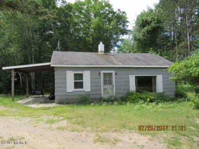 Newaygo County Single Family Home For Sale: 3996 Cleveland Drive W