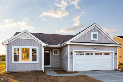 Van Buren County Single Family Home For Sale: 59149 Silvergrass
