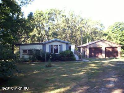 Oceana County Single Family Home For Sale: 7365 N 128th Avenue