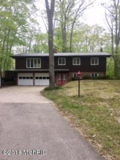 Coloma MI Single Family Home For Sale: $180,000