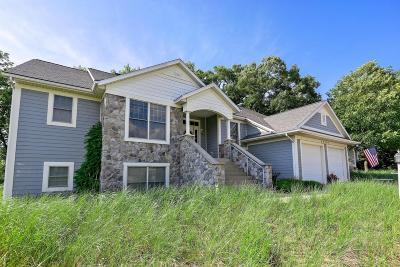 New Buffalo Single Family Home For Sale: 52105 Main Drive