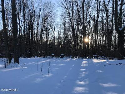 Scottville Residential Lots & Land For Sale: N Lasalle #2.5 Acre