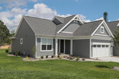 Kalamazoo County Condo/Townhouse For Sale: 8158 Flat Rock Ridge