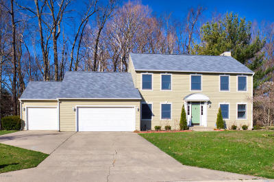 St. Joseph Single Family Home For Sale: 3480 Wyndwicke Drive