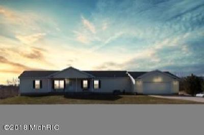 Lowell Single Family Home For Sale: 1294 Shagawa Trail