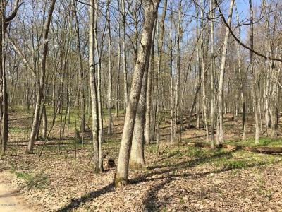 Newaygo County Residential Lots & Land For Sale: 4827 E Russell Rd