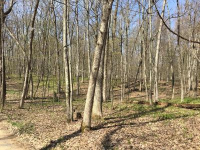 Newaygo County Residential Lots & Land For Sale: E Russell Rd