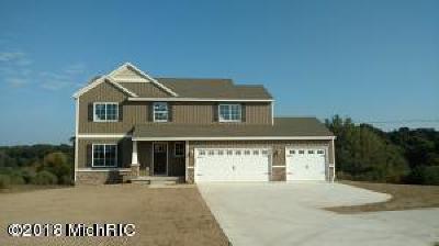 Allegan County Single Family Home For Sale: 4580 Wren Drive SE