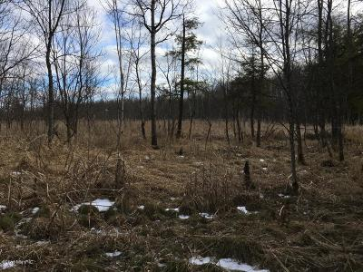 Newaygo County Residential Lots & Land For Sale: E 5288 E 4 Mile Rd