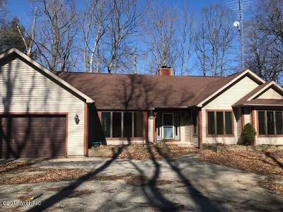 Ludington Single Family Home For Sale: 6167 N Peterson Road