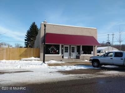 Scottville Commercial For Sale: 143 S Main Street