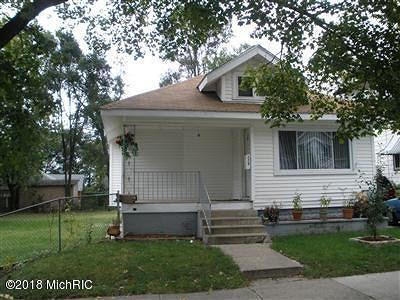 Grand Rapids Single Family Home For Sale: 229 Corinne Street SW