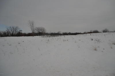 Branch County Residential Lots & Land For Sale: 127 Treat Avenue