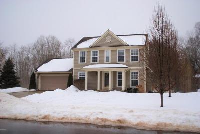 Kalamazoo County Single Family Home For Sale: 2853 Valley Glenn