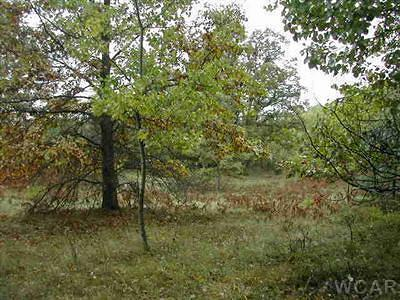 Mecosta County Residential Lots & Land For Sale: 8301 Arlene Avenue
