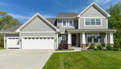 Kalamazoo County Single Family Home For Sale: 6373 Talisker Court