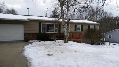 Niles MI Single Family Home Active Backup: $125,000