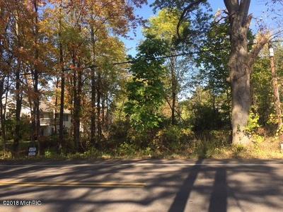 Kalamazoo County Residential Lots & Land For Sale: 1041 E Osterhout Avenue