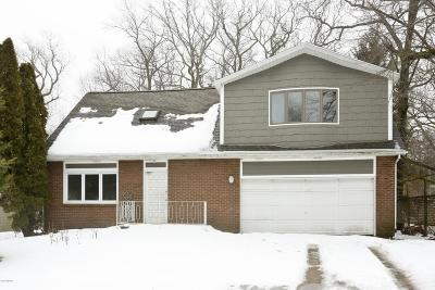 New Buffalo Single Family Home For Sale: 1327 W Water Street
