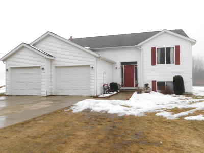 Newaygo County Single Family Home For Sale: 10823 Wisner Avenue