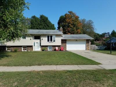 St. Joseph Single Family Home For Sale: 4209 Browning Dr.