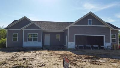 Grand Rapids Single Family Home For Sale: 2953 Bristol Avenue NW