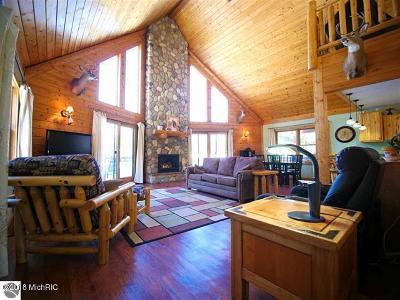 Cadillac Single Family Home For Sale: 1650 E 28 Road